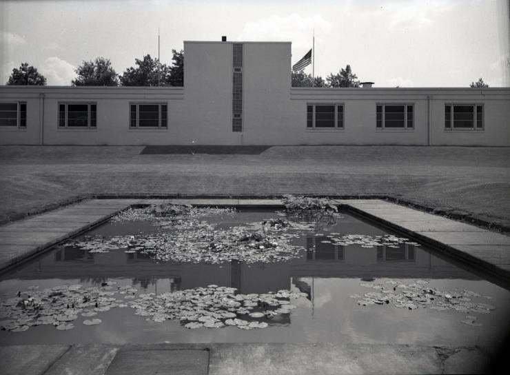 Lily Pond, 1949